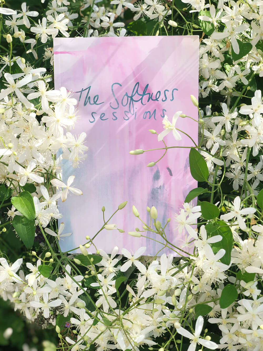Softness Sessions book
